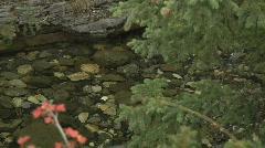 Blue rock creek smooth pan view of canyon rocks audio Stock Footage