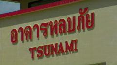 Tsunami save rescue bird house thailand beach Stock Footage