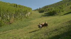 UT PC Horses Meadow 1 Stock Footage