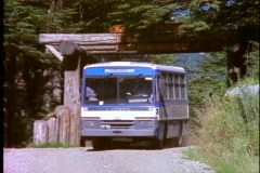 Bus lumbering  through Chilean National Park, Chile Stock Footage