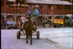 Chile Puerto Varas, horse drawn cart leaving and passes with two men on top Stock Footage