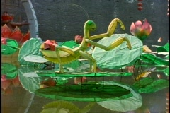 China, Xian, paper grasshoppers for Spring lantern festival, medium shot Stock Footage