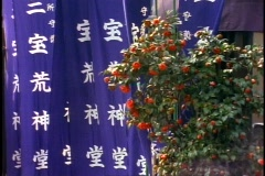 Tokyo, detail of blue banners with Japanese characters, medium close-up Stock Footage