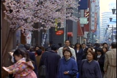 Tokyo, The Ginza District by day, crowds, medium, cherry blossoms, stores Stock Footage