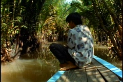 Vietnam jungle, small river, canoe, POV, palms overhang, boy paddles Stock Footage
