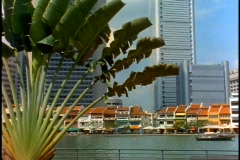 Singapore waterfront, buildings, river, fan palm, pan right, wide shot Stock Footage
