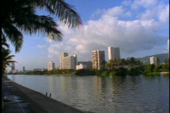 Honolulu Apartments on Alawai Canal, wide shot Stock Footage