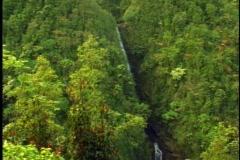 Akaka Waterfall, wide shot, tilt down, on the Big Island of Hawaii Stock Footage