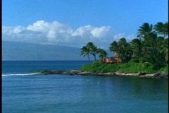 Point of land, sea, palms, medium shot, on Maui in Hawaii Stock Footage
