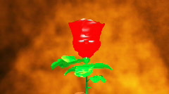 Rose pastic Stock Footage