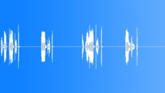 Secret (spoken) Sound Effect