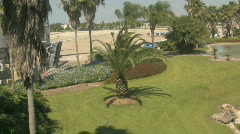 Wind Blows Through The Palm Trees In Floriday Near A Pond 2 Stock Footage