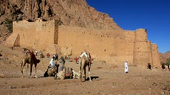 Saint Catherine's Monastery. Sinai Peninsula. Egypt - stock footage