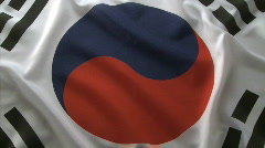 Korean flag Stock Footage