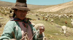 Farmer Woman spinning Alpaca wool, South America. Peru - stock footage