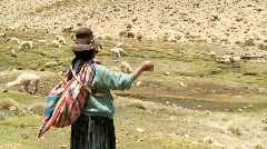 Latin Woman, South America, Spinning Alpaca Wool. PERU Stock Footage