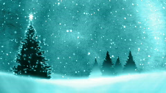 Christmas Tree on the snow. Stock Footage