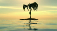 A sunset over an island with palms.  Stock Footage