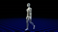 Stock Video Footage of Wireframe woman walking viewed from all angles.