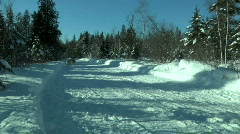 Dogsled Team Running - stock footage
