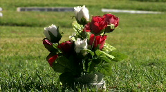 Stock Video Footage of Rose on the cemetery