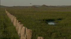 Bird on Fence Post 10 Stock Footage