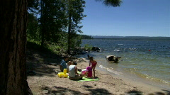 Family Beach Picnic 1 Stock Footage