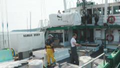 Fishing Boat Crew Off Loading Swordfish - stock footage