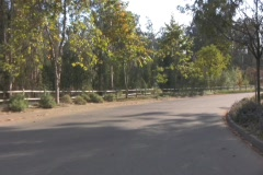Country Drive 1Web Stock Footage