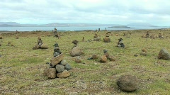 Rock stacks Iceland Stock Footage