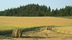 Fertile Farmland Idaho Palouse 107 Stock Footage