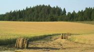 Fertile Farmland Idaho Palouse 107 Stock Footage