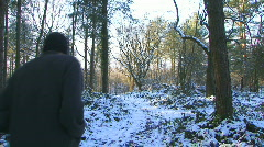snow forest3 - stock footage