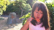 Child blowing bubbles laughing Stock Footage