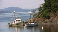 Fishing Boats in Tod Inlet at Brentwood Bay near Butchart Gardens Stock Footage