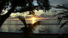 Sunset in Palau on Peleliu behind flat sea and trees Stock Footage