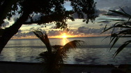 Stock Video Footage of Sunset in Palau on Peleliu behind flat sea and trees