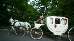 Pair of horses draws carriage with coachman on road Stock Footage