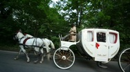 Stock Video Footage of pair of horses draws carriage with coachman on road