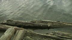 Lake Louise rotting drift wood Water ripples Sand rocks and Beach Stock Footage