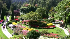 Butchart Gardens Sunken Fountain Stock Footage
