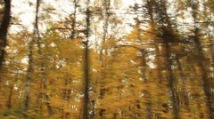Passing by a park with Fall foliage - HD 1920X1080 - stock footage
