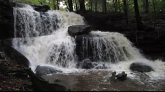 Forest Waterfall 2 Stock Footage