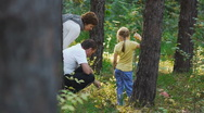 Stock Video Footage of family in the woods