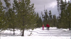 Cross Country Nordic Ski 15.1 Stock Footage