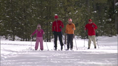 Cross Country Nordic Ski 15 - stock footage
