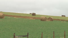 Round Alfalfa Bales Barbed Wire Fence Meadow Harvest against Sky Stock Footage