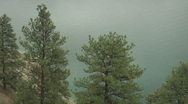 Stock Video Footage of Green pine Trees focus zooms out to Reveal Kalamalka lake and Countryside