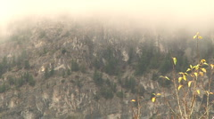 Ghostly etheric mist Drifts past treed rocky mountain Timelapse Stock Footage