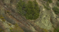 Stock Video Footage of Plunge down rocky Hill side Ravine lined with pine trees to Lake
